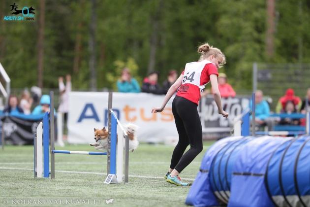 (c) Jukka Pätynen Koirakuvat.fi